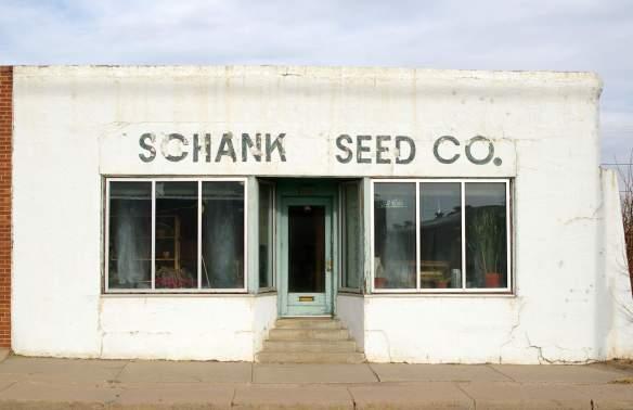 schank seed